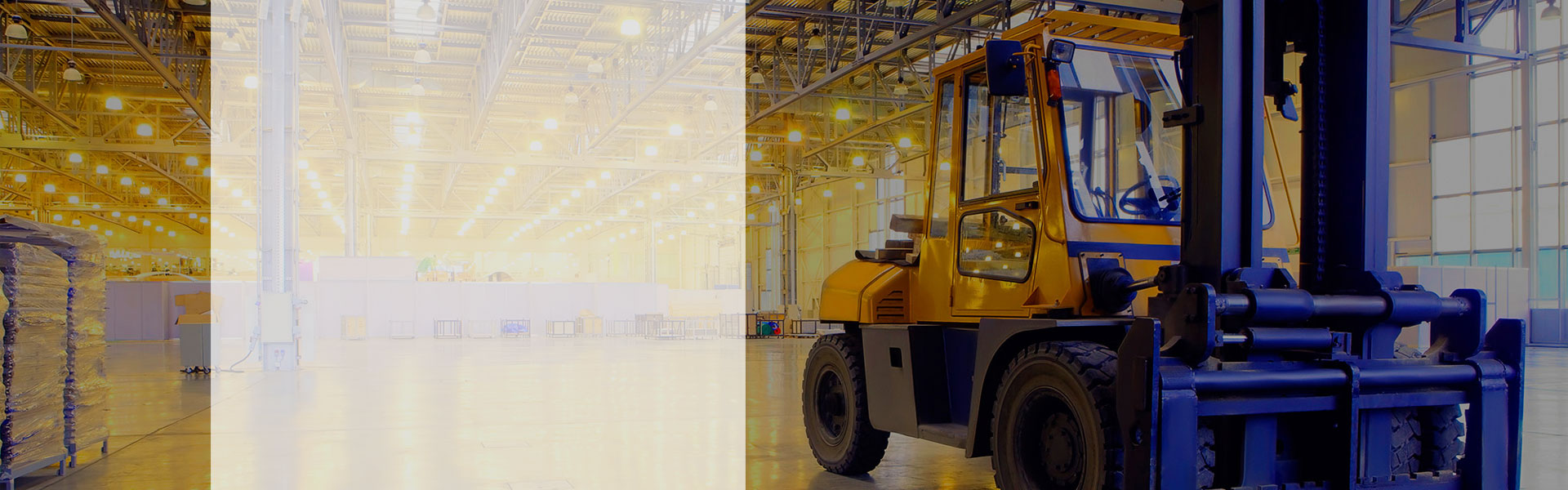 Warehouses services and specialized distribution tailored to specific customers' requirements